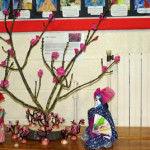 Year 1 cherry blossom