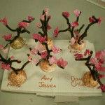Year 1 cherry blossom trees
